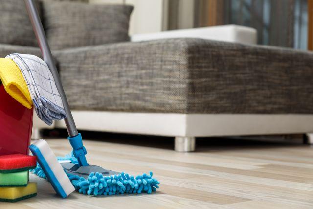 Поддержание чистоты в доме с животными